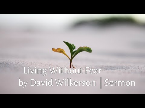 Living Without Fear - David Wilkerson