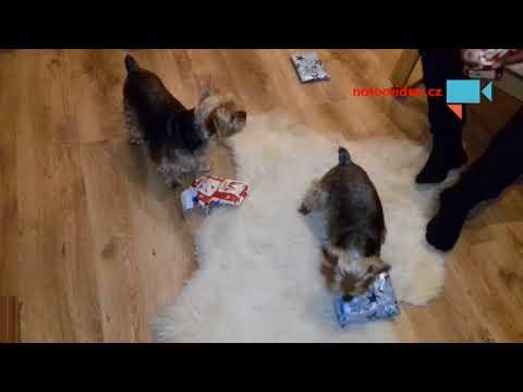 Rozbalováni dárků