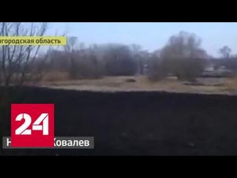 От украинских взрывов в России трясутся окна. Видео очевидца - DomaVideo.Ru