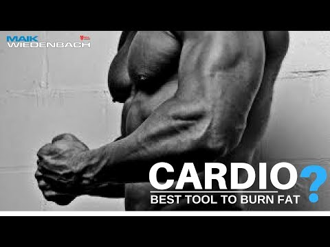 Fat burner - Cardio: Best Tool to Burn Fat?