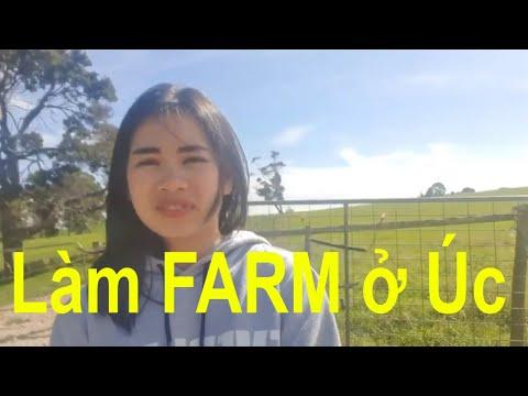 VLOG# 11  FARM Ở ÚC CÓ GÌ ĐẶC BIỆT |CRADLE MOUNTAIN |ELLY LE|CUỘC SỐNG Ở ÚC |TẬP 1