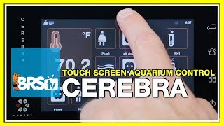 Week 47: Aquarium Controllers – Vertex Cerebra: Programming made easy | 52 Weeks of Reefing #BRS160