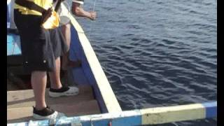 Biak Indonesia  city pictures gallery : GT Popping 2 - Biak - Indonesia (Double Strike)