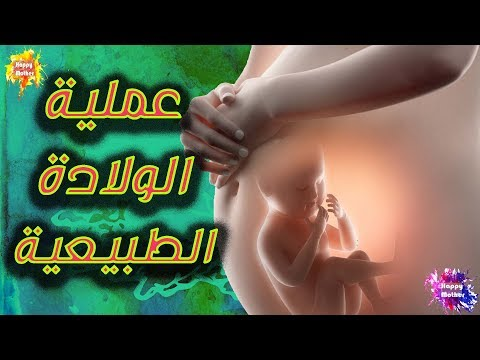 http://www.youtube.com/embed/LNDpP9ZI_Vw
