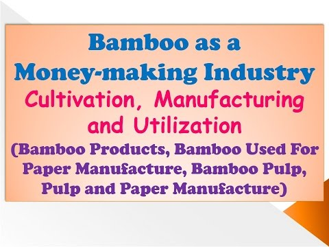 Bamboo as a Money-making Industry, Cultivation, Manufacturing and Utilization