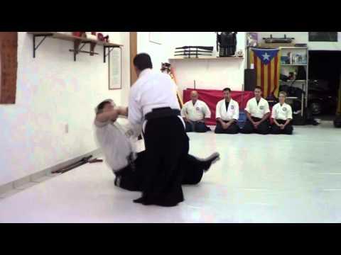 Seibukan Jujutsu Jorge Sanchez Yondan Demo