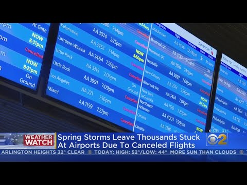 Airlines Cancel Nearly 200 Flights At O'Hare And Midway