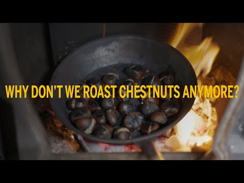 Why don't we roast chestnuts anymore?