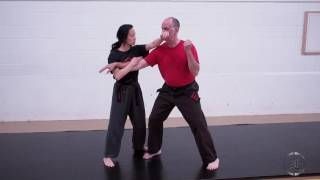 Purple Belt Bunkai Call 6