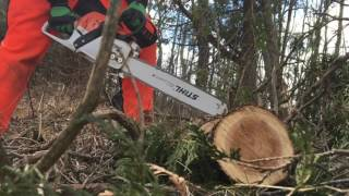 4. Stihl MS 271 Review