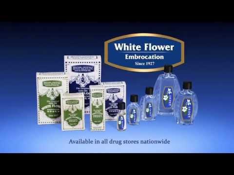 Blog Whiteflower Embrocation Medicated Oil Pak Fah Yeow Fuzai