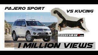 Video Mitsubishi Pajero Sport gagal parkir tabrak maju mundur Sampai Kucing ketakutan MP3, 3GP, MP4, WEBM, AVI, FLV Februari 2018