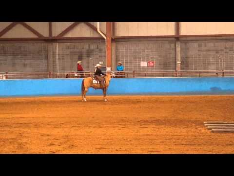 Aqha ranch riding #pattern2
