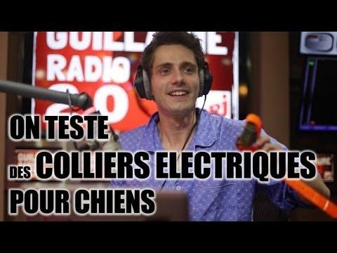 Guillaume Pley teste des colliers electriques pour chien en direct à la radio !!