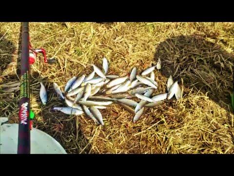 рыбалка в мае на уклейку
