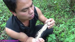 Video Primitive technology - Primitive skills catch big fish and cooking fish in bamboo - Eating delicious MP3, 3GP, MP4, WEBM, AVI, FLV Januari 2019