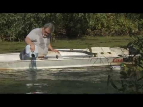 Natures Pond Care YouTube Video