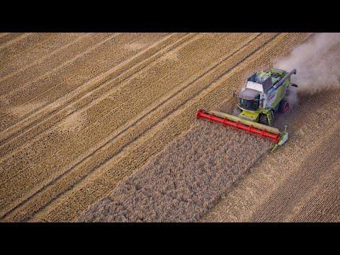 Landwirtschaftsministerin Klöckner ist zufrieden: Ernte 2019 besser als erwartet