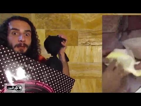 العرب اليوم - بالفيديو:سلاح السخرية من أصحاب