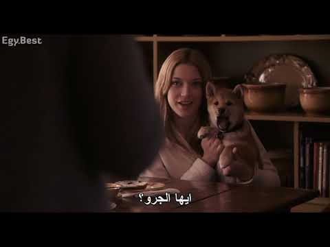EgyBest Hachi A Dogs Tale 2009 BluRay 1080p X264