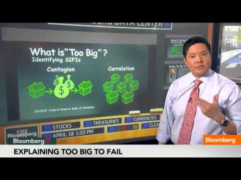 What Is Too Big to Fail?