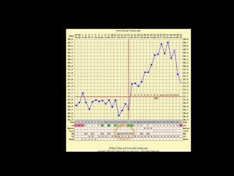 Triphasic fertility chart not pregnant