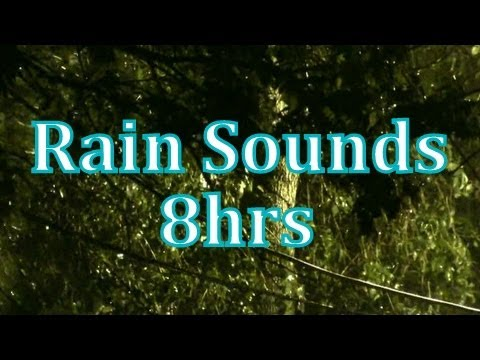 rain - MP3 Downloads of many of my videos at http://www.texashighdef.net This is 8hrs of my rain videos put together into one for a full nights rest. Filmed in Aust...