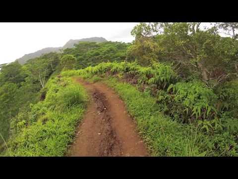 Mountian Bike Kauai - Kuilau Trail (видео)
