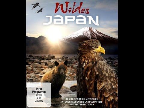 Дикая природа Японии (Тропическое побережье и страна медведей)