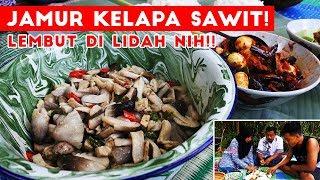 Download Video MUANTEEEEP! Jamur Kelapa Sawit + Terong Telur Puyuh Petai Balado! MP3 3GP MP4
