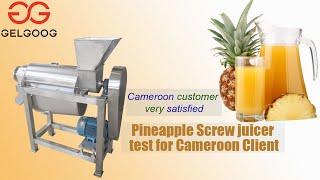 Pineapple juice extractor machine juice making machine factory price youtube video
