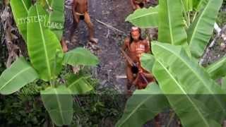 Video Tribu desconocida y NO contactada del Amazonas MP3, 3GP, MP4, WEBM, AVI, FLV Juni 2018
