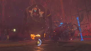 father hinox meets calamity ganon. i also used accio code to get father hinox inside the sanctum to fight with calamity ganon.