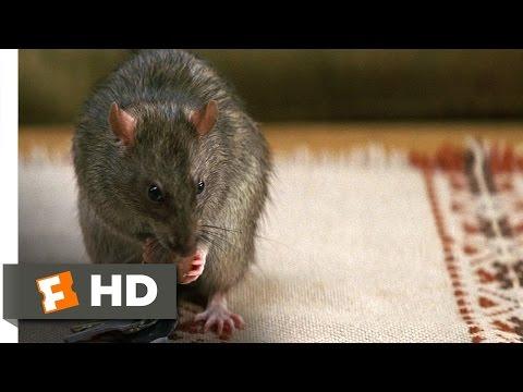Cheaper by the Dozen 2 (1/5) Movie CLIP - The Chisler (2005) HD
