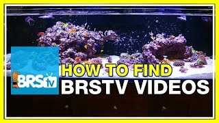 FAQ #44 So many BRStv videos, how do I find them all?