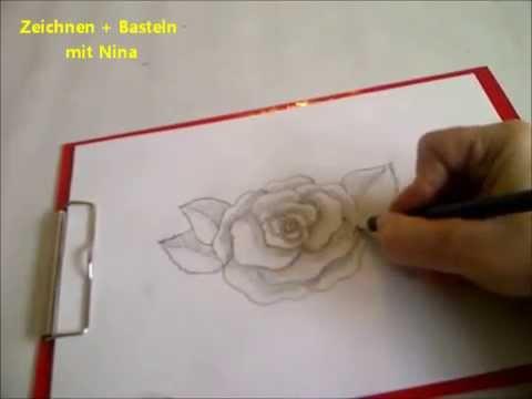 Zeichnen lernen für Anfänger. Blume zeichnen. Eine blühende Rose malen