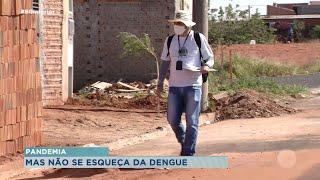 Autoridades de Bauru estão em alerta com aumento nos casos de Dengue