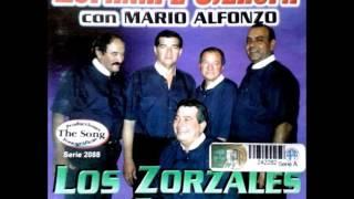 ESPAÑAPE OYEJHOPA CON MARIO ALFONSO Y LOS ZORZALES DE CAACUPE  The Song