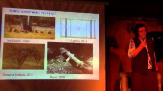 Жанна Резникова: Животные считают иначе — Резникова Ж.И. — видео
