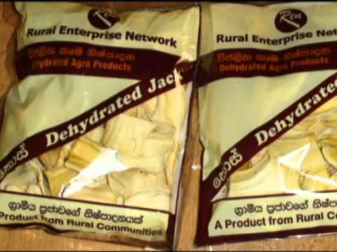 Jack Fruit Dehydration