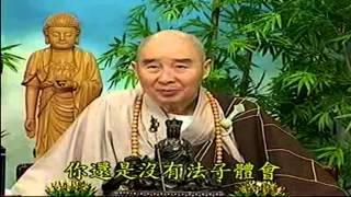 Kinh Vô Luợng Thọ (1998) tập 95&96 - Pháp sư Tịnh Không