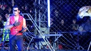 Video Circo Rolex / Ultimo show de Apolo definitivo MP3, 3GP, MP4, WEBM, AVI, FLV Agustus 2019