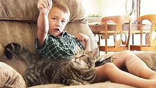 Cat Saves Little Boy From Being Attacked by Neighbor's Dog
