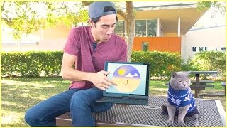 Top Zach King magic tricks with pet - Best funny animals magic vines