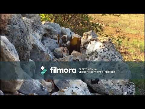 Carabina aria compressa 4,5mm vs bottiglia (SLOW MOTION)