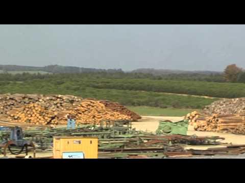 Mehr als ein Sägewerk: Die Holzindustrie Pauls AG an ihrem neuen Standort