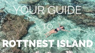 Video ROTTNEST ISLAND - How to Make the Most of your Day Trip from Perth MP3, 3GP, MP4, WEBM, AVI, FLV Maret 2019
