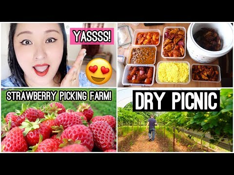 (Fun Day at the Strawberry Picking Farm | Delicious Nepali Food for Picnic! - Day #128 - Duration: 13 minutes.)
