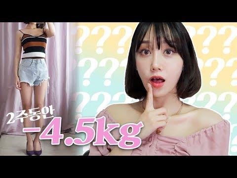 2주일에 -4.5kg 감량 다이어트팁!! 표준-〉슬림 다이어트 법!