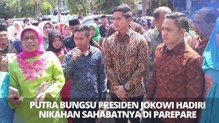 Video Kaesang Pangareb Hadiri Nikahan Sahabatnya di Parepare, Sulawesi Selatan MP3, 3GP, MP4, WEBM, AVI, FLV April 2019